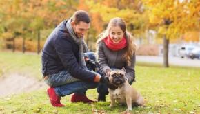 Dog Park Dates